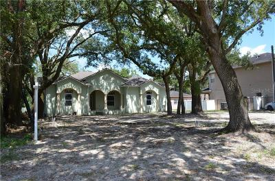 Tampa Single Family Home For Sale: 10808 Perez Drive