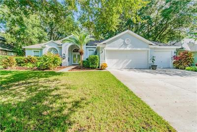 Lithia Single Family Home For Sale: 15010 Eaglerise Drive