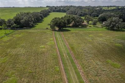 Pasco County Single Family Home For Sale: 9229 Fort King Road