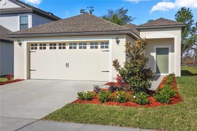 Lakeland Single Family Home For Sale: 2491 Caspian Drive