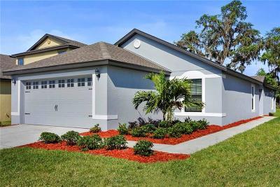 Lakeland Single Family Home For Sale: 2475 Caspian Drive