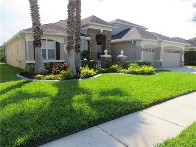 Tampa Single Family Home For Sale: 20124 Tamiami Avenue