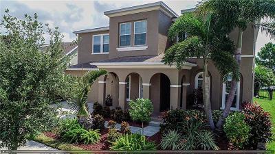 Apollo Beach Single Family Home For Sale: 6715 Park Strand Drive