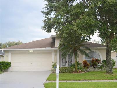 Wesley Chapel Single Family Home For Sale: 27430 Sky Lake Circle