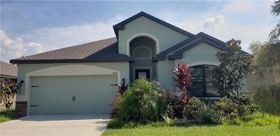 Riverview Single Family Home For Sale: 11921 Winterset Cove Drive