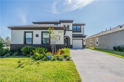 Hillsborough County Single Family Home For Sale: 5302 Silver Sun Drive