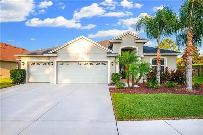 Pasco County Single Family Home For Sale: 27525 Sora Boulevard