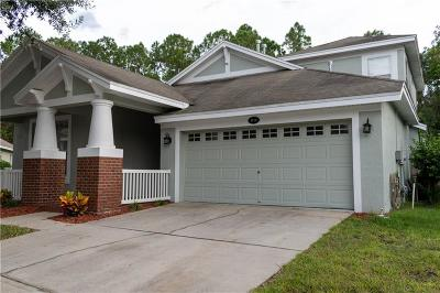 Lutz Single Family Home For Sale: 4810 Sky Blue Drive