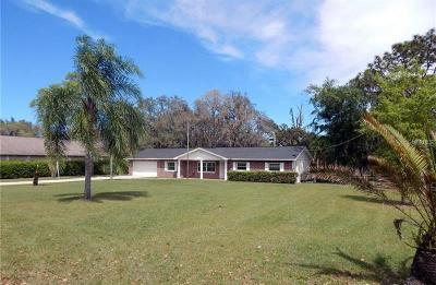 Valrico Single Family Home For Sale: 2211 Lithia Pinecrest Road