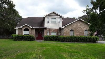 Valrico Single Family Home For Sale: 3609 Delarua Place