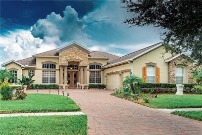 Hillsborough County Single Family Home For Sale: 1413 Brilliant Cut Way