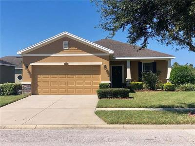 Hillsborough County, Pasco County, Pinellas County Single Family Home For Sale: 12204 Fairlawn Drive