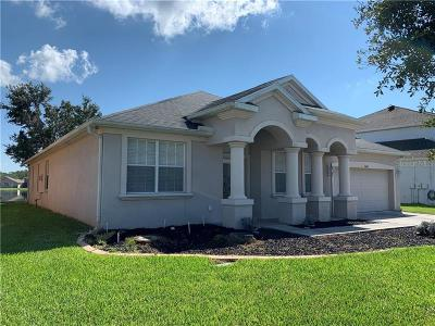 Hillsborough County, Pasco County, Pinellas County Single Family Home For Sale: 10602 Burning Bush Terrace