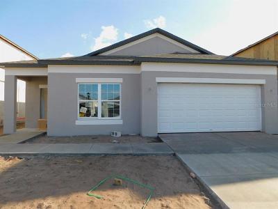 Hillsborough County Single Family Home For Sale: 11409 Alachua Creek Lane #1042