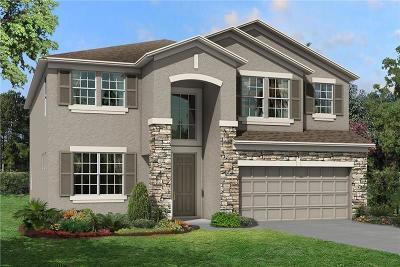 Hillsborough County Single Family Home For Sale: 11407 Alachua Creek Lane #1041