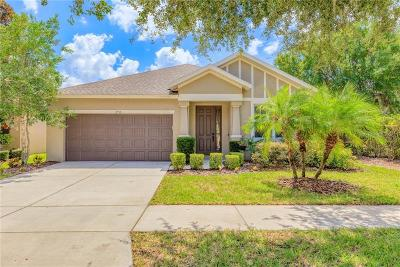 Lutz Single Family Home For Sale: 2918 Winglewood Circle