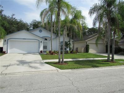 Tampa Single Family Home For Sale: 13524 Bellingham Drive