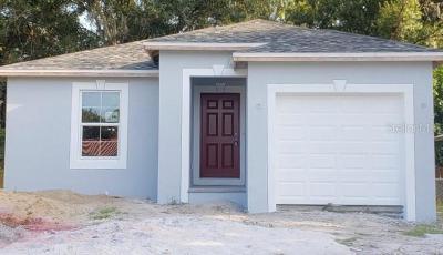Hillsborough County Single Family Home For Sale: 1204 W Washington Street
