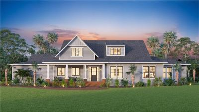 Hillsborough County Single Family Home For Sale: 17053 COMUNIDAD DE AVILA
