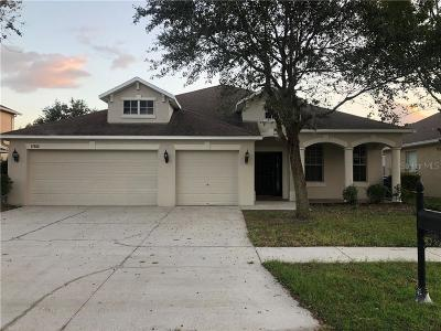 Hillsborough County, Pasco County, Pinellas County Single Family Home For Sale: 17910 SOUTER LANE