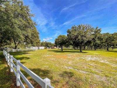 Tampa Residential Lots & Land For Sale: 13001 STATE STREET