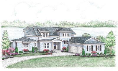 Hillsborough County Single Family Home For Sale: 16133 CARENCIA LANE