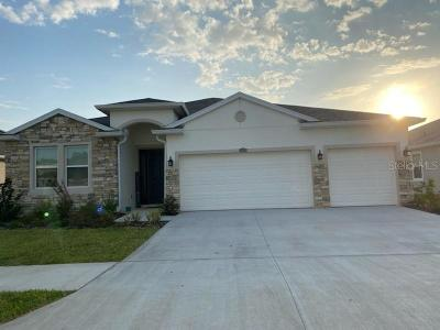 Hillsborough County, Pasco County, Pinellas County Single Family Home For Sale: 10930 LAXER CAY LOOP