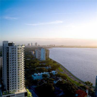 Tampa Condo For Sale: 2910 W BARCELONA STREET #502
