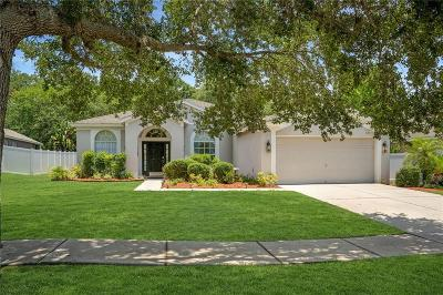 Hillsborough County, Pasco County, Pinellas County Single Family Home For Sale: 2038 SAMANTHA LANE