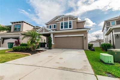 Hillsborough County, Pasco County, Pinellas County Single Family Home For Sale: 32770 WINDELSTRAW DRIVE