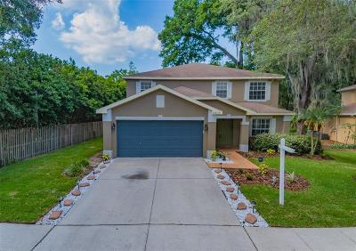 Hillsborough County, Pasco County, Pinellas County Single Family Home For Sale: 2819 MINUTEMAN LANE