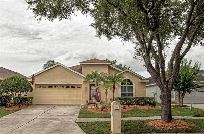 Hillsborough County, Pasco County, Pinellas County Single Family Home For Sale: 18821 MAISONS DRIVE