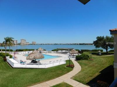 Hernando County, Hillsborough County, Pasco County, Pinellas County Rental For Rent: 6158 Palma Del Mar Boulevard S #204