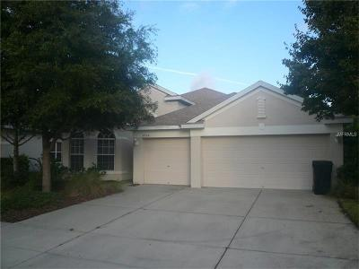 New Port Richey, New Port Richie Single Family Home For Sale: 9250 Edistro Place