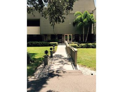Hernando County, Hillsborough County, Pasco County, Pinellas County Rental For Rent: 36750 Us Highway 19 N #21-218