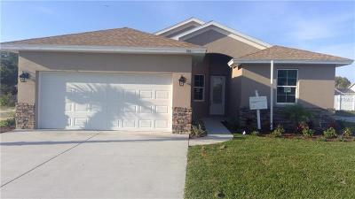 New Port Richey, New Port Richie Single Family Home For Sale: 8509 Sunset Harbor Court