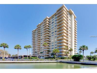 Rental For Rent: 1621 Gulf Boulevard #201