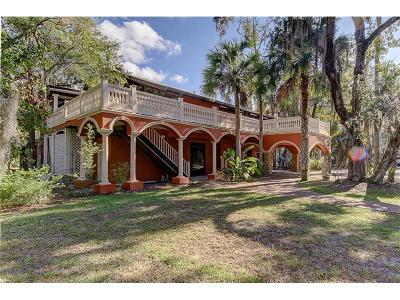 Homosassa Single Family Home For Sale: 10137 W Fishbowl Drive