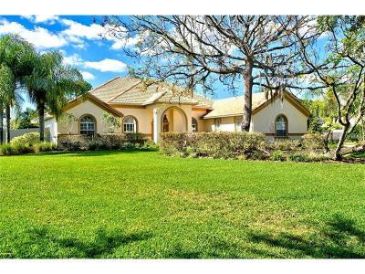Odessa Single Family Home For Sale: 10637 Echo Lake Drive