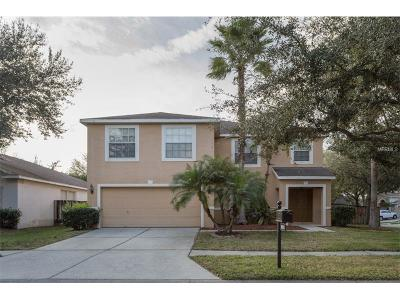 Tampa Single Family Home For Sale: 8501 Parrots Landing Drive