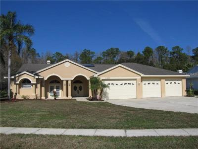 Palm Harbor Single Family Home For Sale: 5695 Stag Thicket Lane
