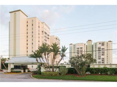 St Pete Beach Condo For Sale: 420 64th Avenue #102