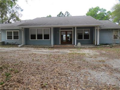Palm Harbor Single Family Home For Sale: 275 Omaha Street