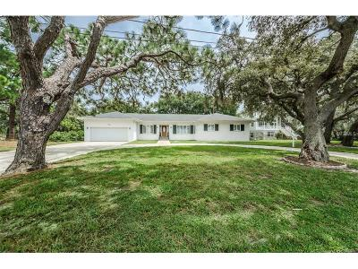 Tarpon Springs Single Family Home For Sale: 1105 S Florida Avenue