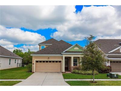 Tampa Single Family Home For Sale: 11427 Quiet Forest Drive