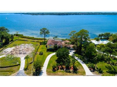 Oldsmar Single Family Home For Sale: 728 Shore Drive E
