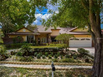 Palm Harbor Single Family Home For Sale: 2428 Waterview Court
