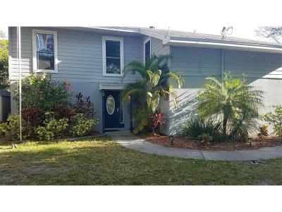 Hernando County, Hillsborough County, Pasco County, Pinellas County Single Family Home For Sale: 3133 N Canal Drive