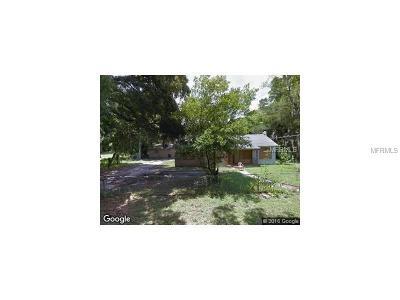 Hillsborough County Single Family Home For Sale: 1920 E Osborne Avenue