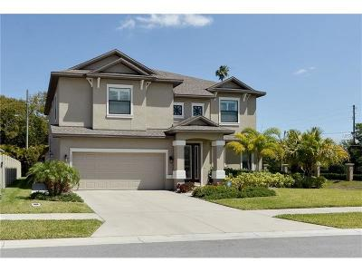 Seminole Single Family Home For Sale: 11711 Kierkel Lane